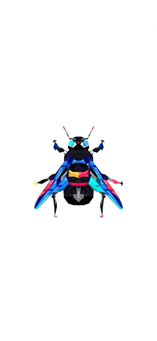 创意 色彩 几何 苍蝇