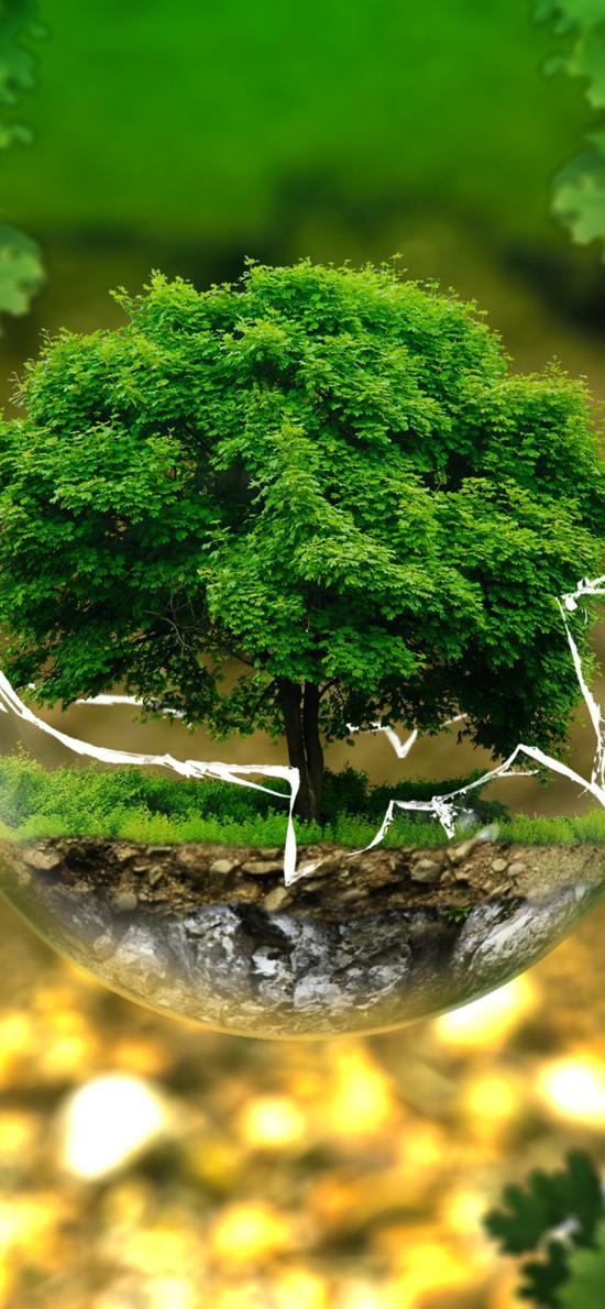 生物 玻璃球 森林 绿色有机