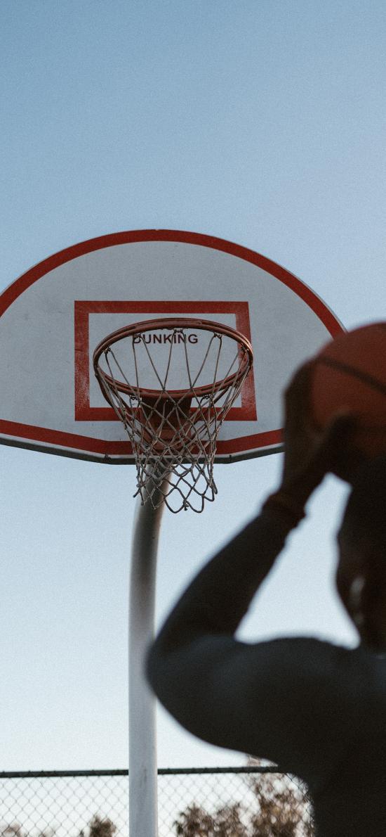 投篮 篮球 球框 运动