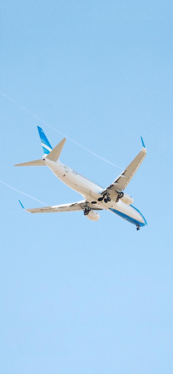 飛機 飛行 航空 藍天 天空