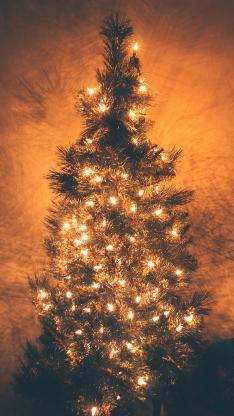 圣诞 圣诞树 灯光 节日