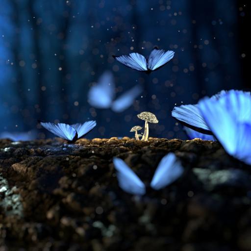 夜晚 蘑菇 菌类 发光 蝴蝶
