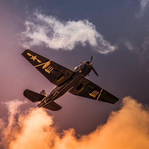飞机 飞行 航空 战斗机 烟雾 云