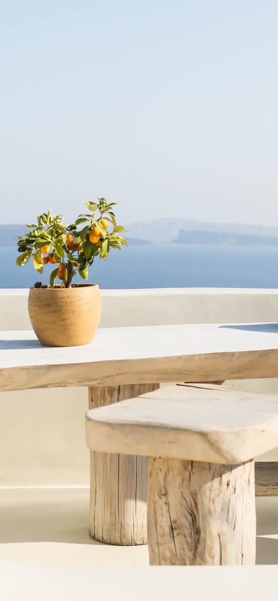 风光美景 白色建筑 盆栽
