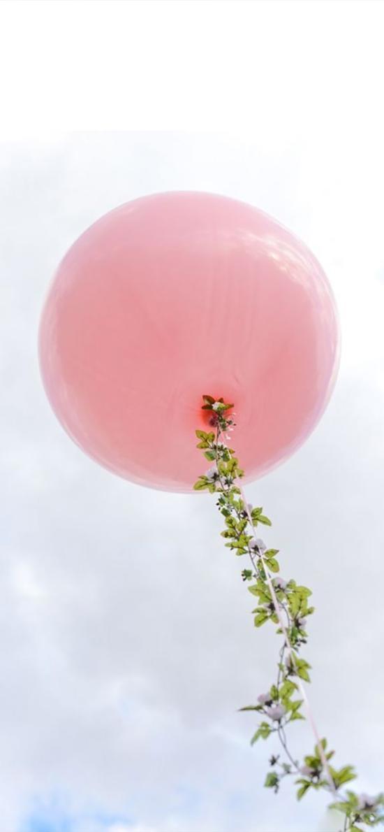 气球 天空 粉