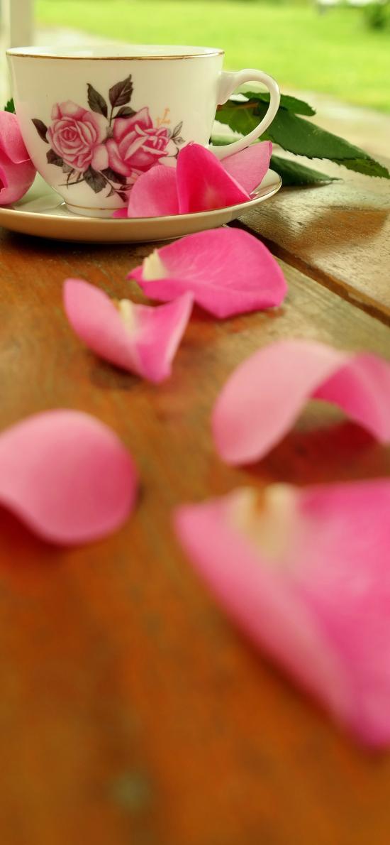 花瓣 鲜花 粉 玫瑰