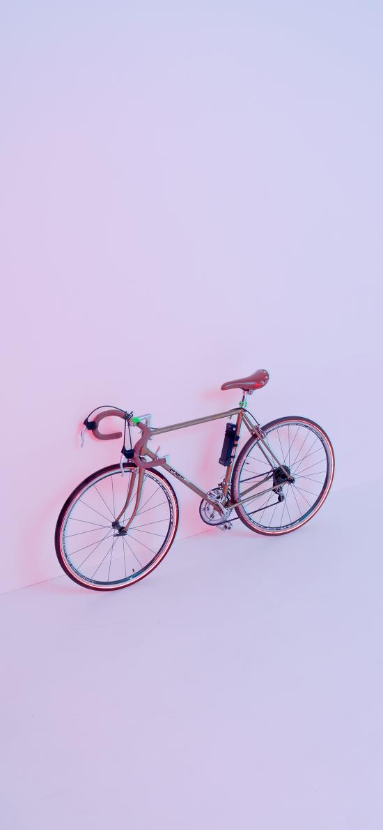 单车 自行车 粉色 运动器材