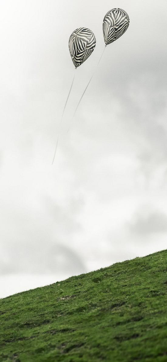 气球 草地 斑马纹气球 创意