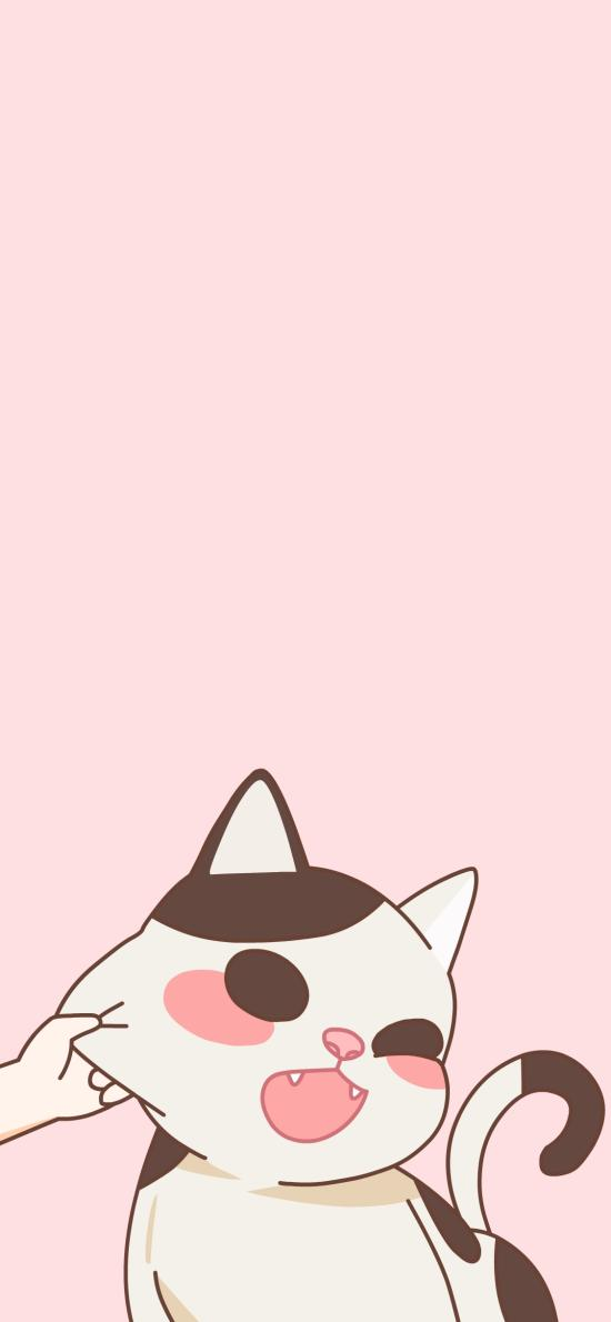 猫咪 可爱 捏 掐 吃鱼 粉色