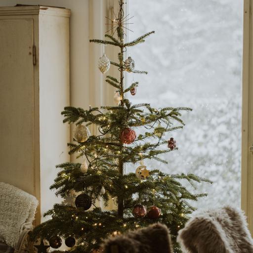 圣诞节 圣诞树 装饰  摆放
