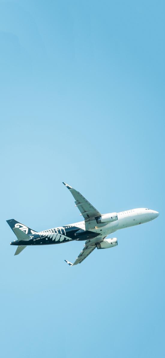 飛機 飛行 航空 藍天