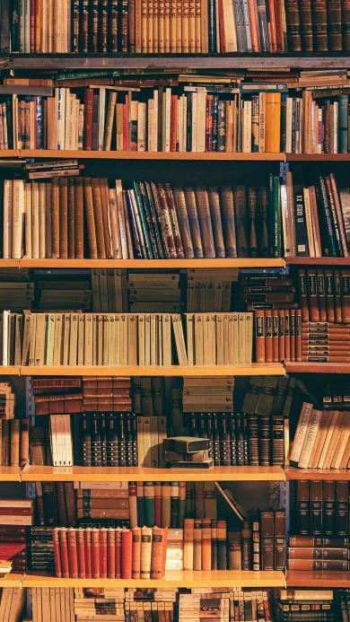 书架 书本 排列 阅读