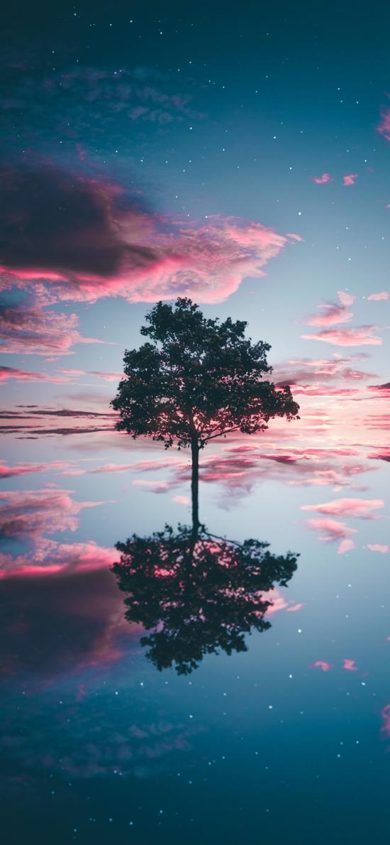 倒影 树木 天空 云朵 对称