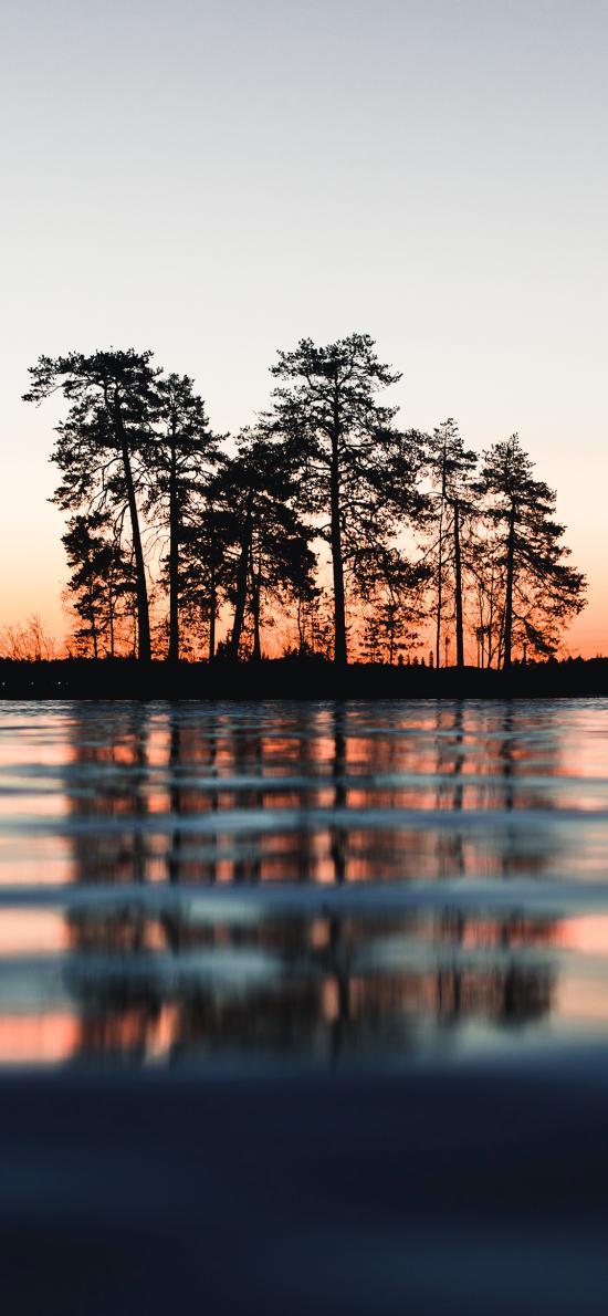 倒影 树木 湖水 黄昏 对称