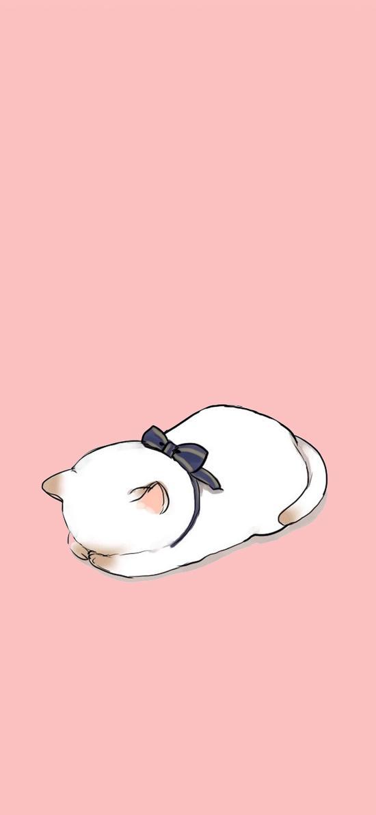 卡通 猫 趴 粉蝴蝶结