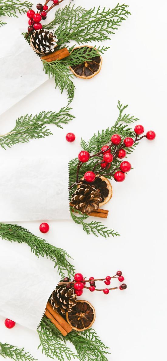 圣诞装饰 枝叶 小红果 柠檬片