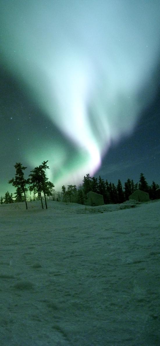 雪地 树木 极光美景 天空