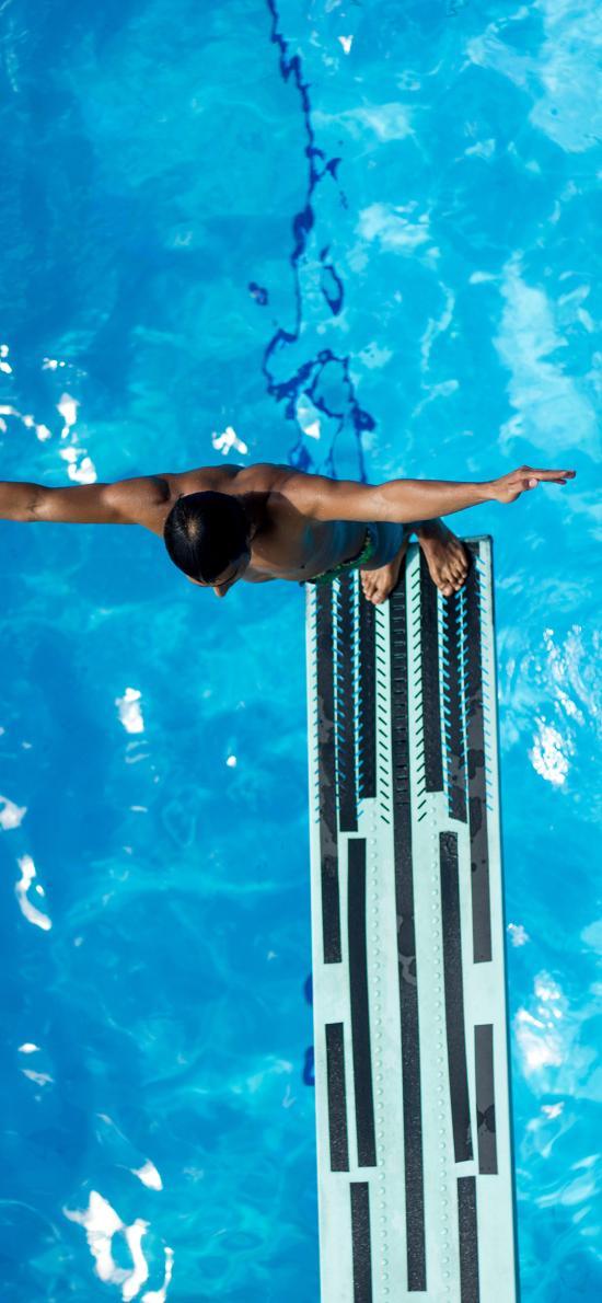 跳水 泳池 运动 跳板