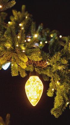 松树 松针 小挂灯 照明