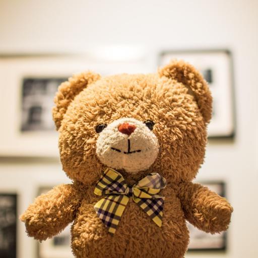 玩具 玩偶 小熊 蝴蝶结
