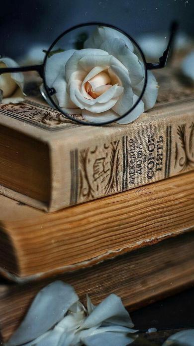 书籍 鲜花 花朵 眼镜