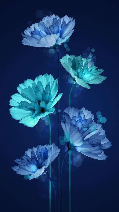 花 枝干 蓝色 唯美 盛开