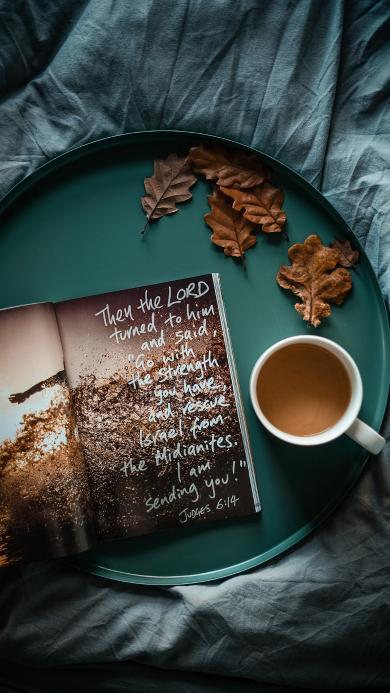 托盘 咖啡 树叶 杂志