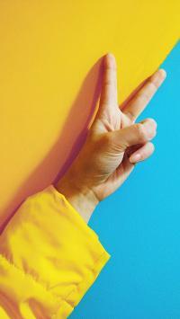 手势 黄蓝 剪刀手  分割线