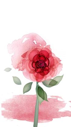 鲜花 创意 手绘 色彩