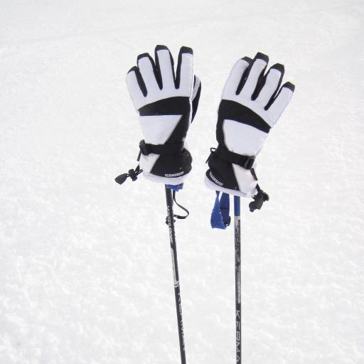 手套 雪地 杆子 滑雪 运动