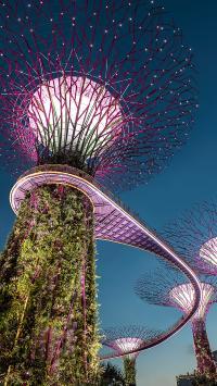 空中栈道 景观 设计 建筑唯美