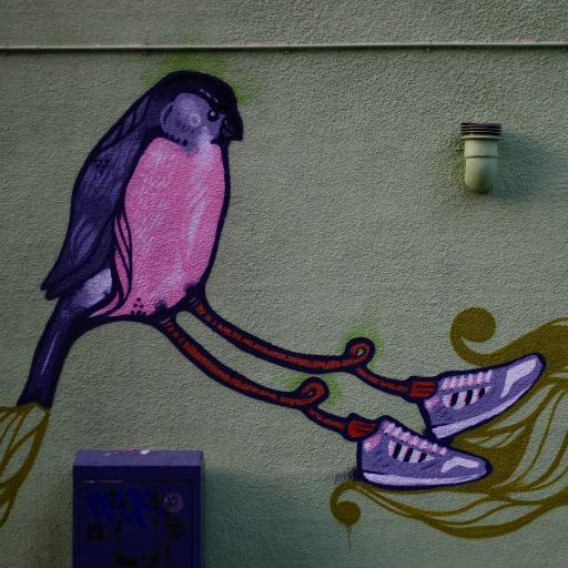 潮流涂鸦 喷绘 鸟