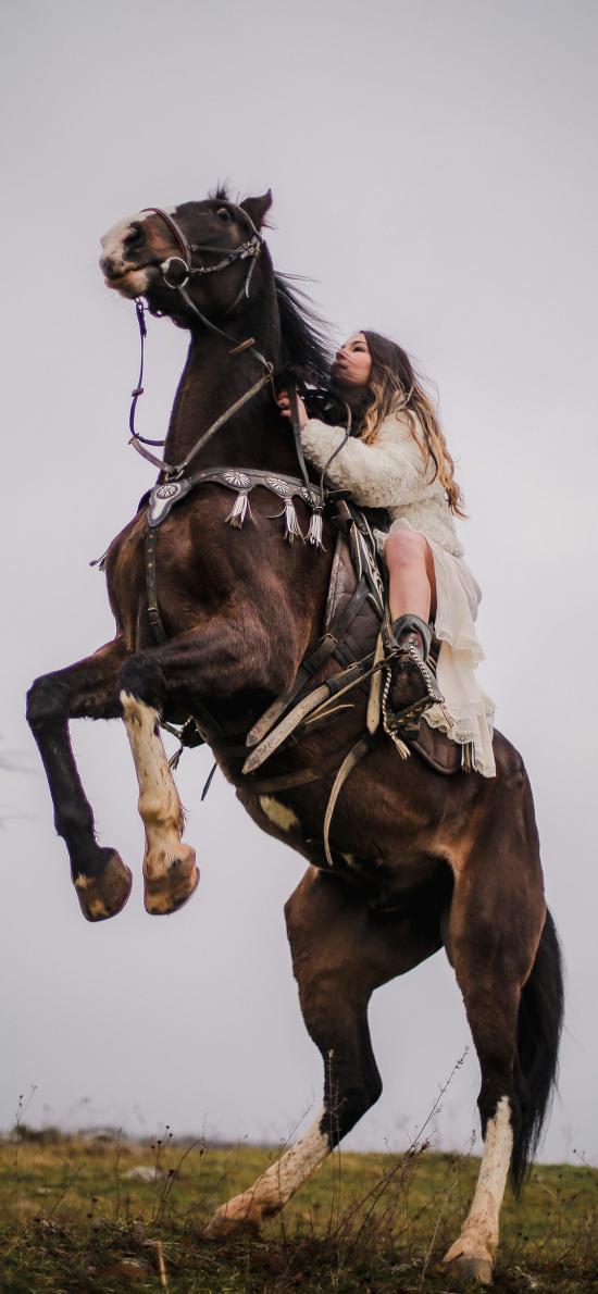 马匹 骑马 女孩 野外