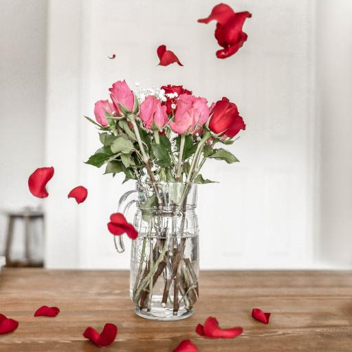 玫瑰 花瓶 花瓣 撒落