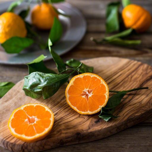 橙子 水果  枝叶 营养