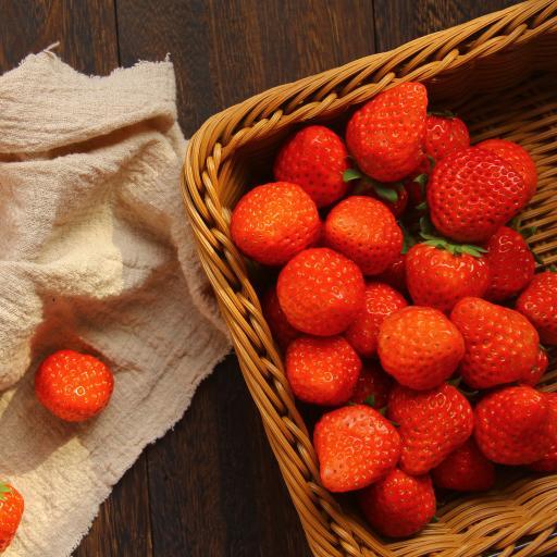 草莓 水果 鲜红 新鲜