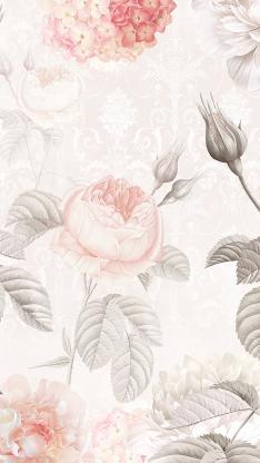 花卉 唯美 浪漫 枝叶