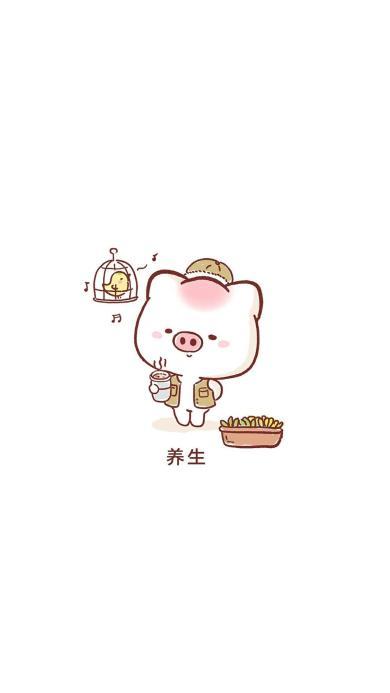 养生 猪 可爱 卡通