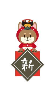 新年 春节 狗