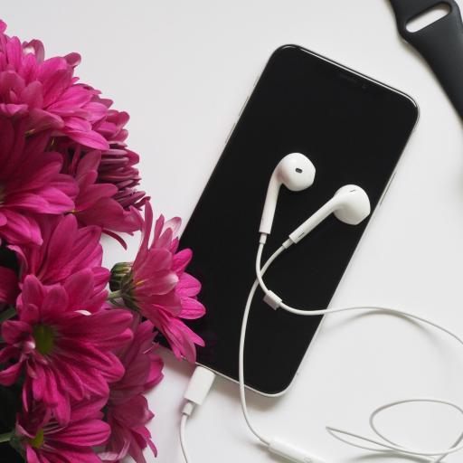 耳机 手机 鲜花 iWatch