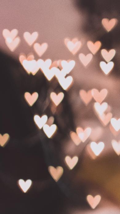 爱心 平铺 爱情 温馨