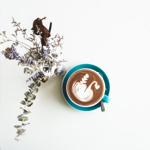 饮品 咖啡 枝叶 杯具