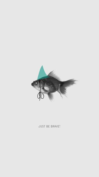 金鱼 just be brave 勇敢一点