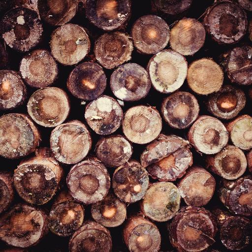 树木 树轮 堆积 切割