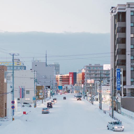 日本 北海道 冬季 雪景