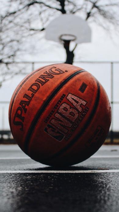 篮球 运动 球类