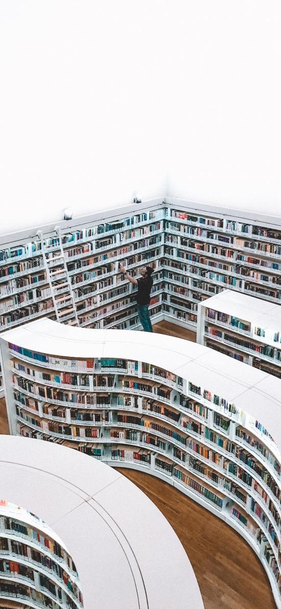 图书馆 建筑 书籍 大量 阅读