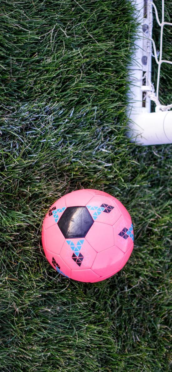 足球 运动 粉色 草地