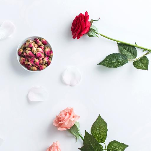 鲜花 玫瑰 花瓣 花茶苞