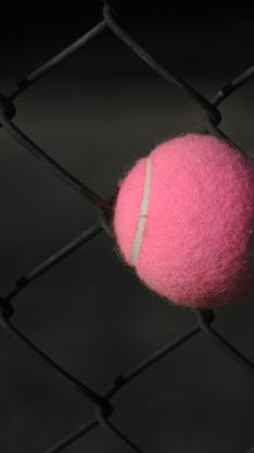 网球 粉色 球类 铁丝网